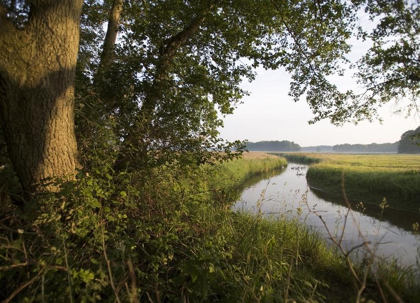 Geopark de Hondsrug, voor eenweekendje weg in Drenthe