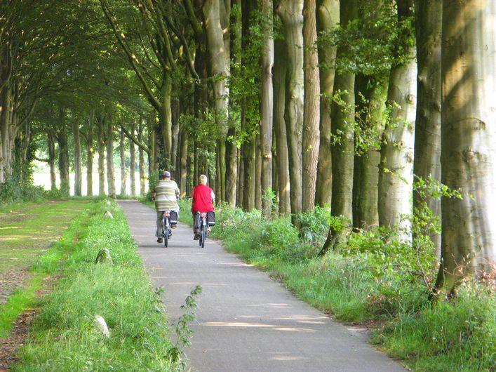 4- tot 8 daags senioren arrangementen Drenthe
