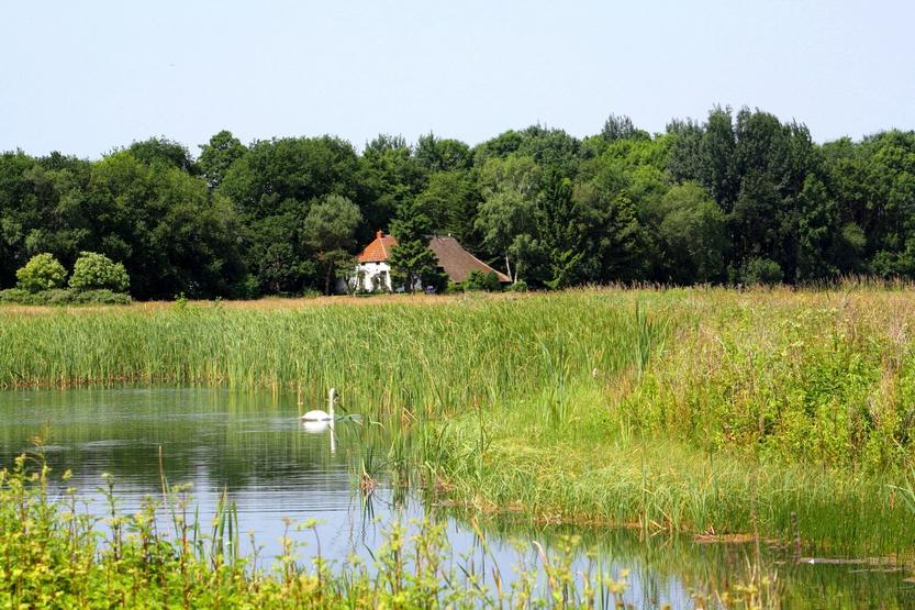 Geopark de Hondsrug - Overnachten bij hotel De Meulenhoek
